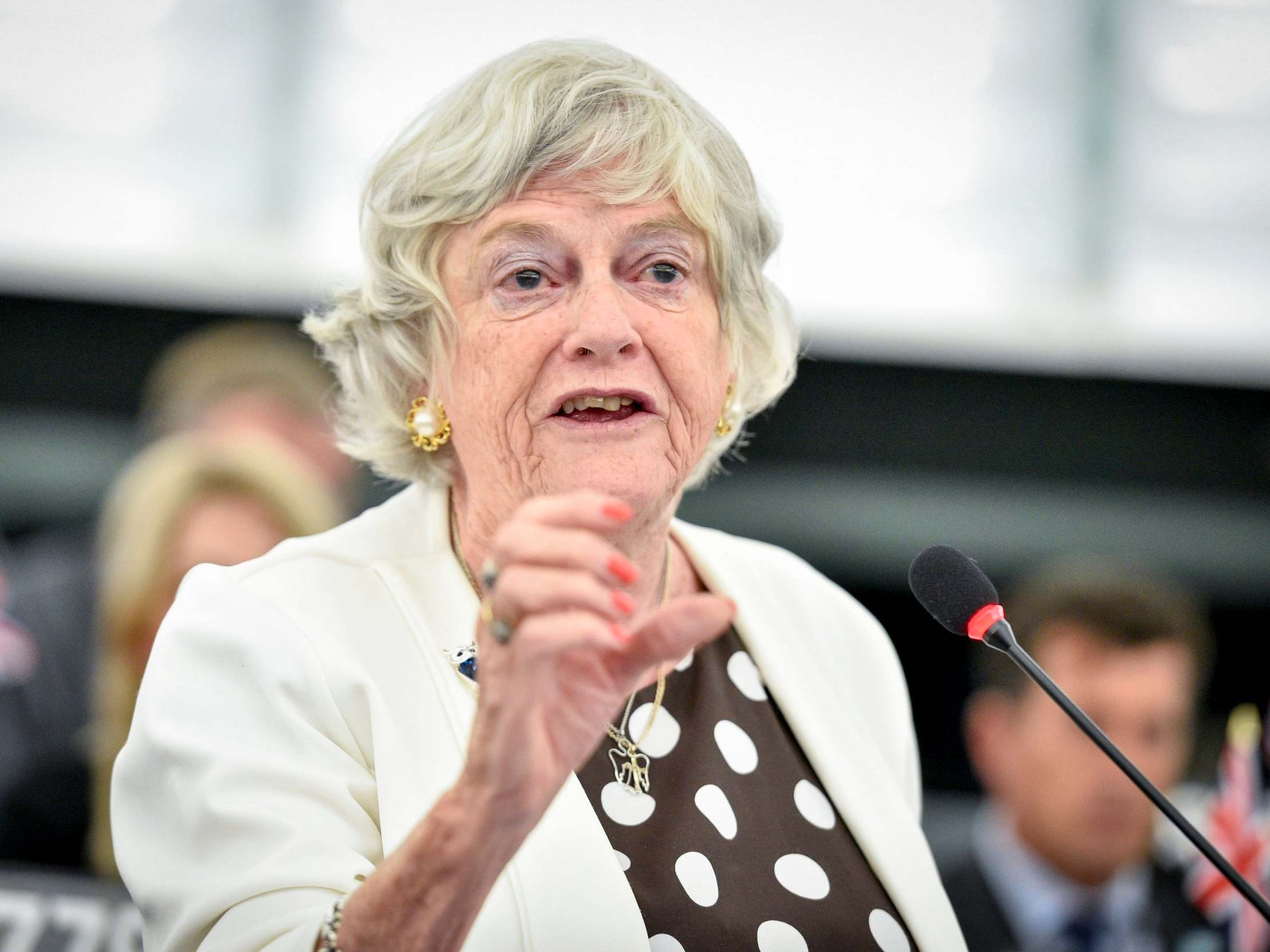Ann Widdecombe: Fury as MEP compares Brexit to 'slaves rising up against their owners' 9